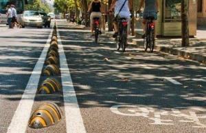 cycling armadillo