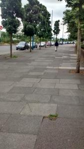 plumstead cycle lane