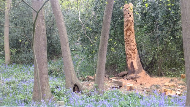 carving woods